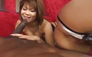 Japanese Beauties VS Threatening Bobtail - 01